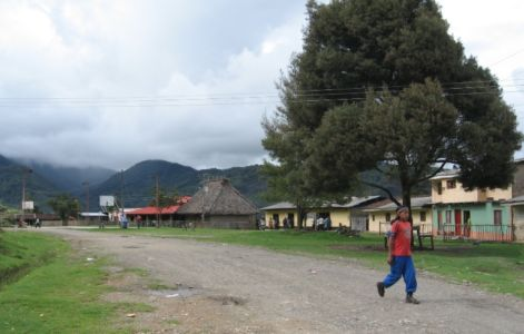 Tumbichucue