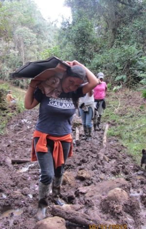Comunidad de Minas realiza acarreo de materiales